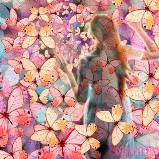 Ja! Nisem metulj – buba sem!